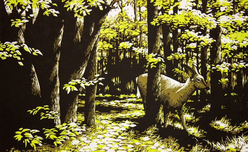 Woodcut print of a deer in the forest